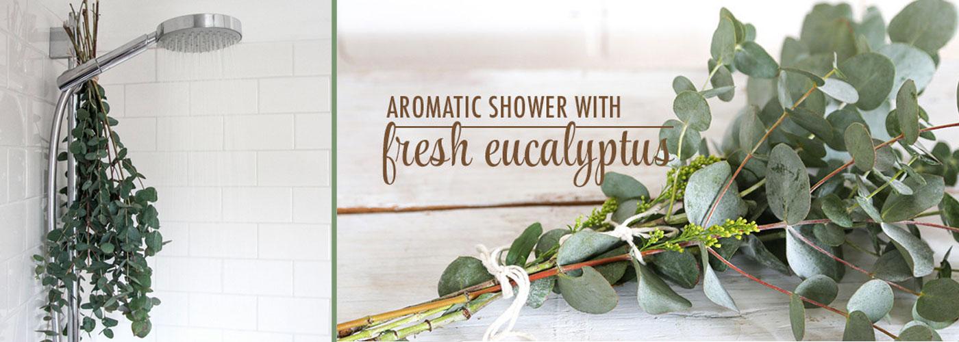 eucalyptus-shower