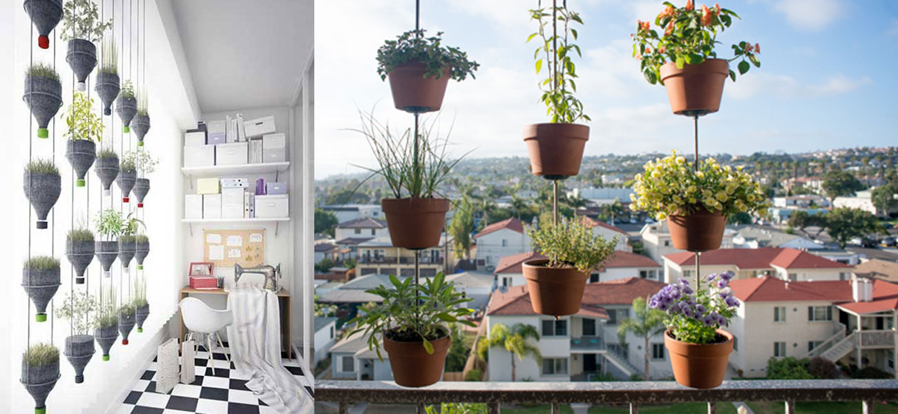 Balcony Vegetable Garden Ideas for Apartments - Indroyal Properties